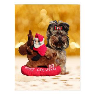 Niedliche Yorkshire-Terrier-frohe Weihnachten Postkarte