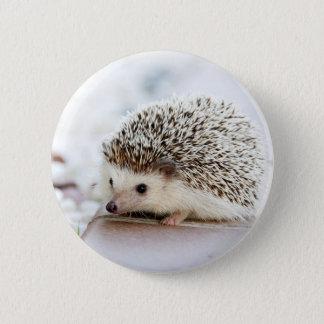 Niedlicher Baby-Igel Runder Button 5,7 Cm