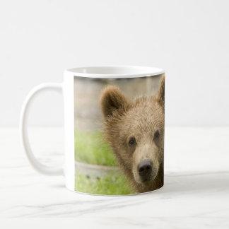 Niedlicher Bär Kaffeetasse