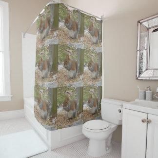 Niedlicher Eichhörnchen-Duschvorhang Duschvorhang