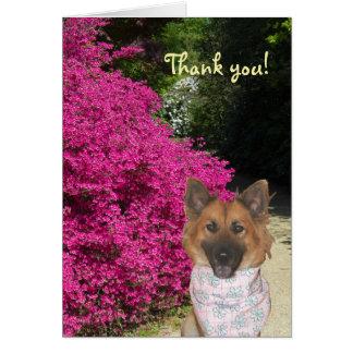 Niedlicher Hund danken Ihnen zu kardieren Karte