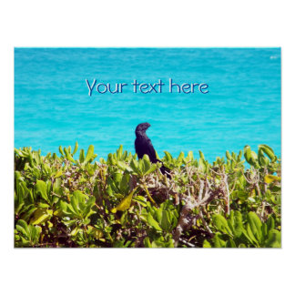 Niedlicher kleiner schwarzer Vogel Poster