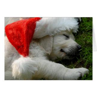 Niedlicher Labrador-Welpe mit Weihnachtshut Karte