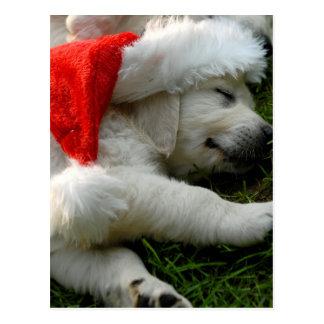 Niedlicher Labrador-Welpe mit Weihnachtshut Postkarte