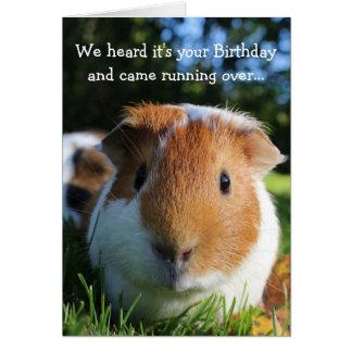 Niedlicher lustiger Meerschweinchen-Geburtstag Grußkarte