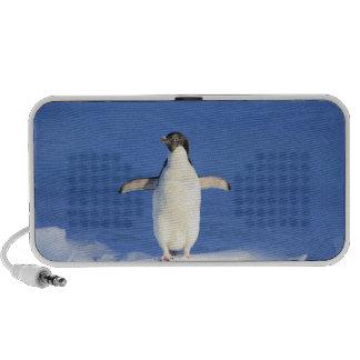 Niedlicher Penguin Mini Lautsprecher