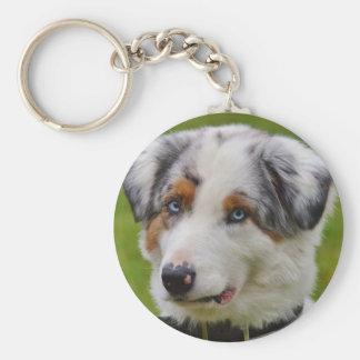 Niedlicher personalisierter Hundeschlüsselkette Schlüsselanhänger