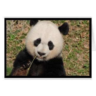 Niedlicher riesiger Panda-Bär Karte