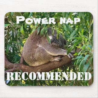 Niedlicher Schlafenkoala empfiehlt ein Mauspad