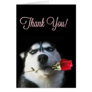 Niedlicher Schlittenhund und Rose danken Ihnen zu Karte