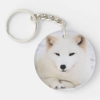 Niedlicher weißer polarer Fuchs Schlüsselanhänger
