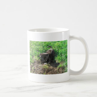 Niedlicher Welpe, der in ein Loch sich gräbt Kaffeetasse