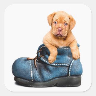 Niedlicher Welpen-Hund in einem Stiefel-Aufkleber Quadratischer Aufkleber