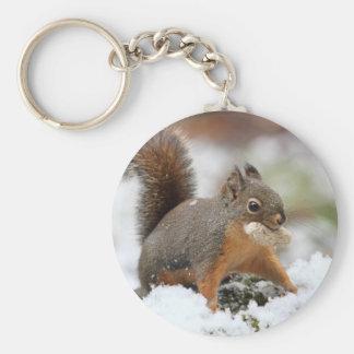 Niedliches Eichhörnchen im Schnee mit Erdnuss Schlüsselanhänger