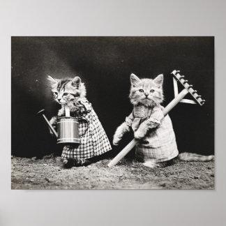 Niedliches gekleidetes Vintages Plakat der Katzen