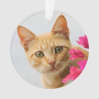 Niedliches Ingwer-Katzen-Kätzchen, das Sie rundes Ornament