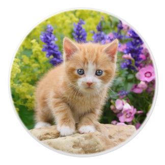Niedliches Ingwer-Katzen-Kätzchen in den Blumen - Keramikknauf