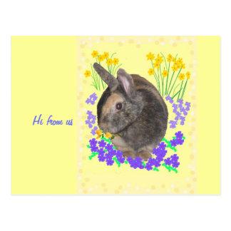 Niedliches Kaninchen-Foto und -Blumen Postkarte