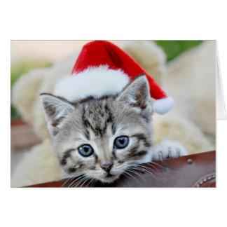 Niedliches Kätzchen mit Weihnachtshut Karte
