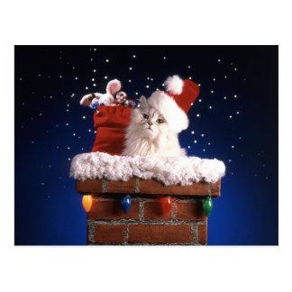 Niedliches Kätzchen mit Weihnachtsmannmütze Postkarte