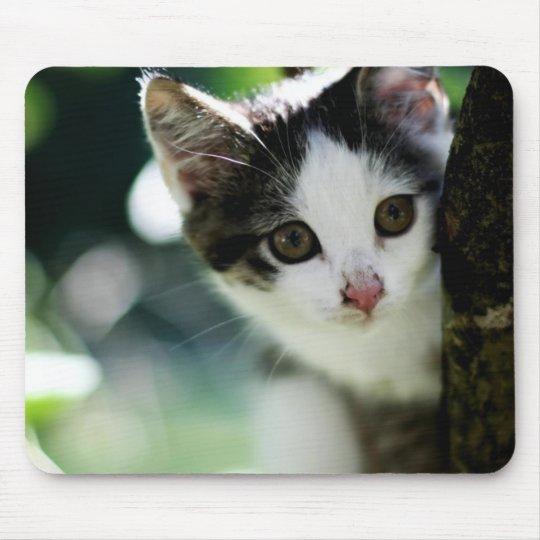 Niedliches Kätzchen Mousepad