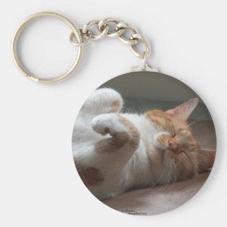 Niedliches Katzenschlafen Keychain Schlüsselanhänger