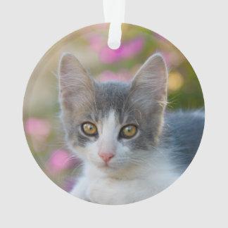 Niedliches kleines zweifarbiges Kätzchen-flaumige Ornament
