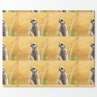 Niedliches Meerkat Verpackungs-Papier Geschenkpapier
