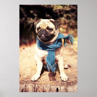 Niedliches Mops-Hundeporträt mit blauem Schal Poster