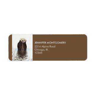 Niedliches Otter-Tier-Bild