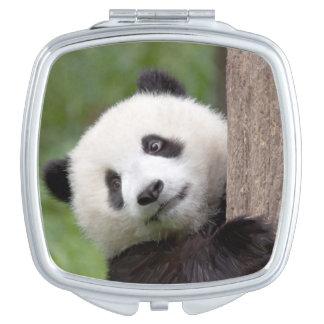 Niedliches Pandajunges Taschenspiegel