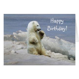 Niedliches polares Bärenjunges u. arktische Karte