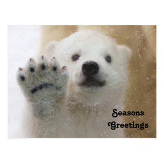 Niedliches polares Bärenjungs-Wellenartig bewegen Postkarte