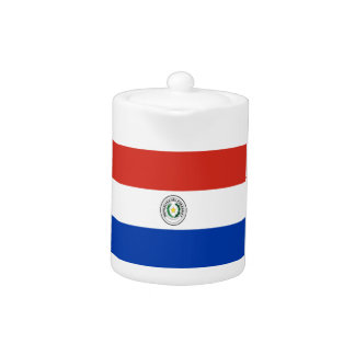Niedrige Kosten! Paraguay-Flagge
