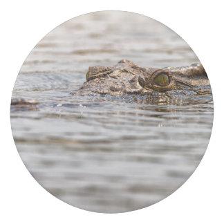 Nil-Krokodil Radiergummi 1