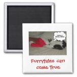 Noël croient le chaton noir et blanc aimant pour réfrigérateur