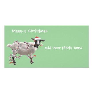 Noël de chèvre cartes avec photo
