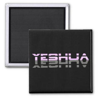 Noir affectueux rose de Yeshua Reflet Gris Aimant Pour Réfrigérateur