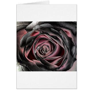Noir et rose renversants se sont levés carte de vœux