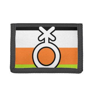 NON-BINARY FLAGGE UND SYMBOL