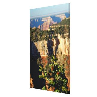 Nordamerika, USA, Arizona, Grand Canyon Gespannte Galeriedrucke