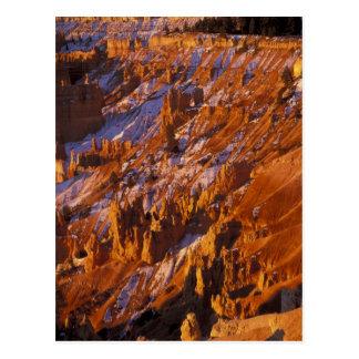 Nordamerika, USA, Utah, Bryce Schlucht Postkarte