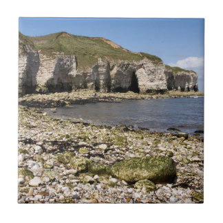 Nordlandung bei Flamborough in Yorkshire-Foto Fliese