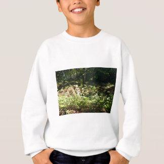 Norfolk-Waldland Sweatshirt