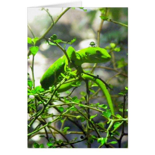 Northlandgrüner Gecko Grußkarte