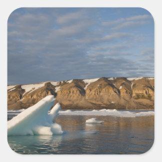 Norwegen, Svalbard, Spitzbergen-Insel, stellend Quadratischer Aufkleber