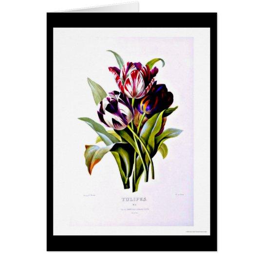 Notecard-Botanicals-Pierre Joseph Redoute 15 Mitteilungskarte