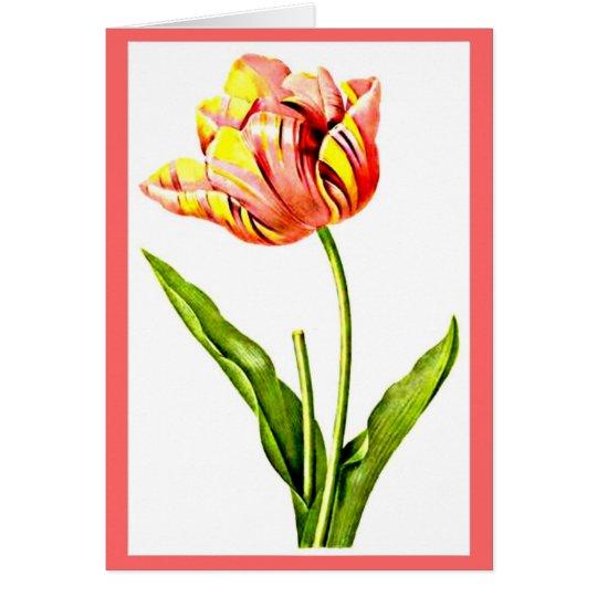 Notecard-Botanicals-Pierre Joseph Redoute 21 Mitteilungskarte