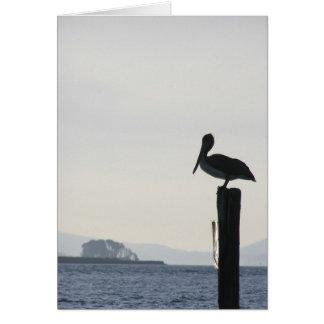Notecard - Profil des Pelikans auf Posten Karte