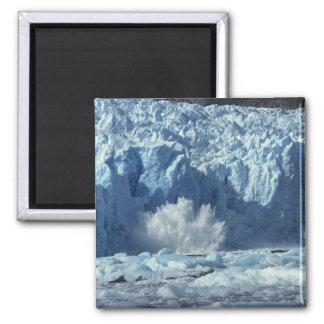 Nouveau-a mis bas l'iceberg éclaboussant dans frai magnet carré